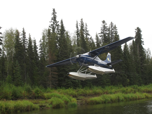 Flying into Deshka Wilderness Lodge--home