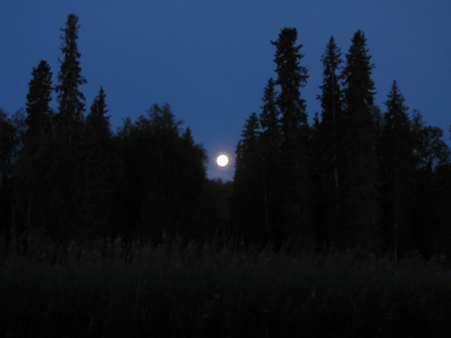 Early morning blue moon of July 31st 2015.