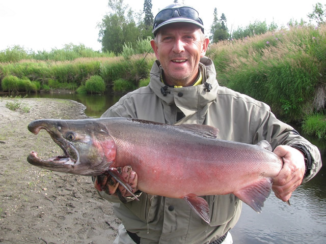 Mike from Switzerland lands a nice Deshka River silver!